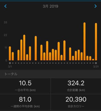 2019年3月の月間走行距離