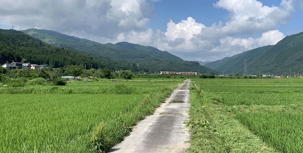 一之宮の田園風景
