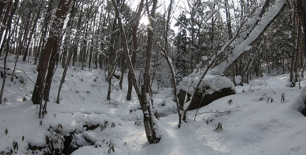 原山への雪道
