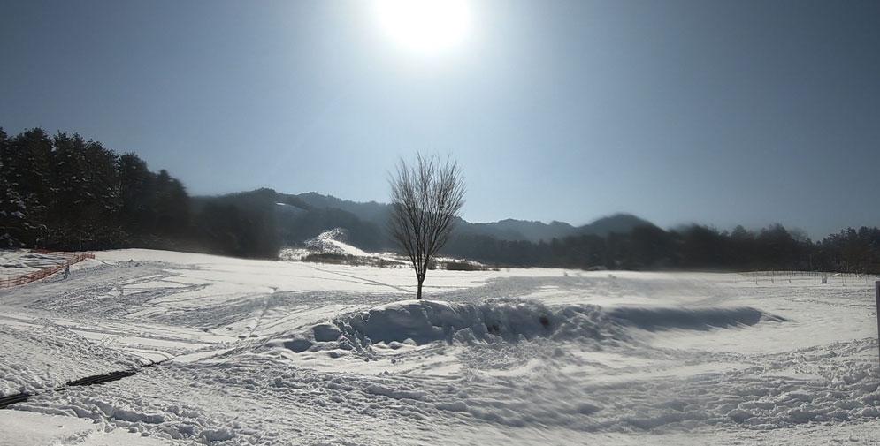 すっかり晴れた原山公園