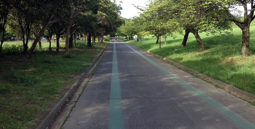 公園の周回コース