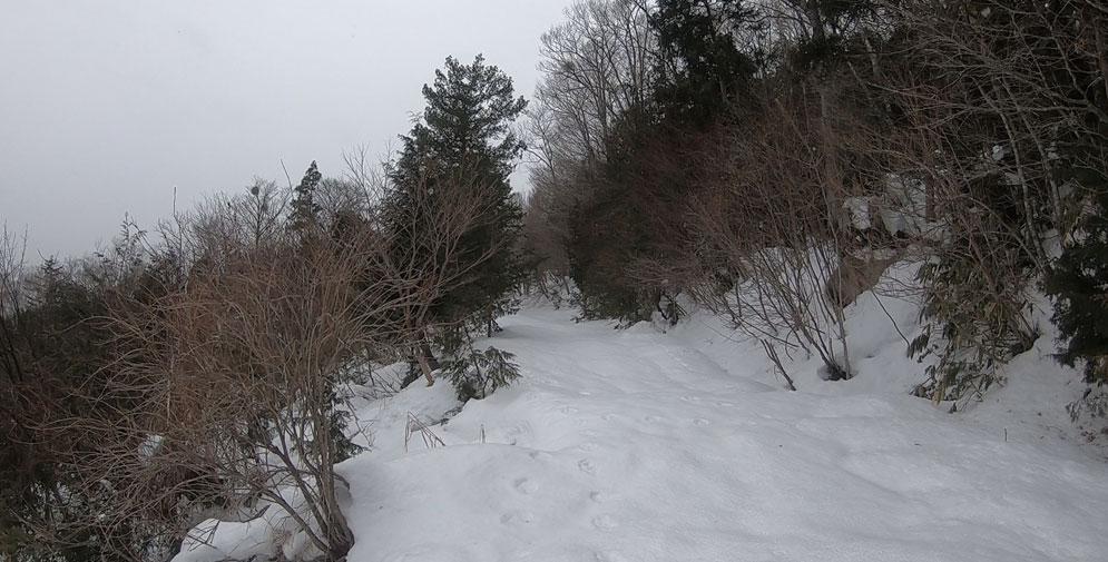 雪がちらほら